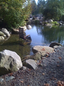 The Trout Pond created by Mark the Pond Guy