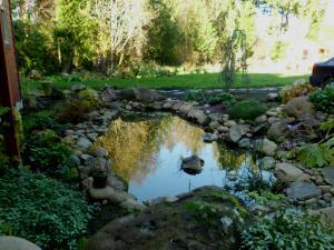 Fall garden  pond