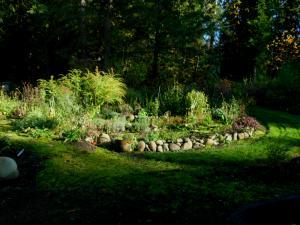 Fall Spiral Garden in the shadows