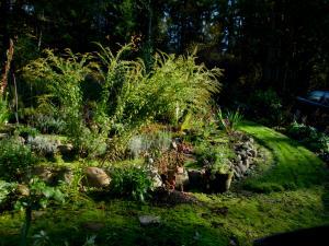 Fall Spiral Garden