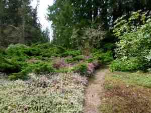 Chase Garden Path