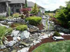 Tracey Copeland's Garden