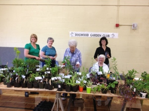 Hard at Work at the plant sale — Sheryl, Ginny, Betty, Debbie and Mary
