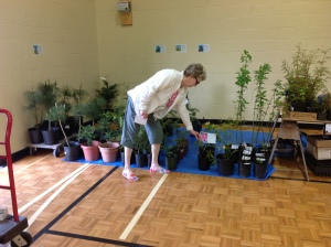 Jan Landry helping set out plants